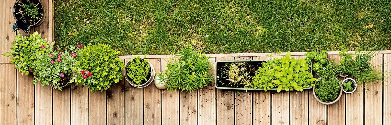 Environnement-Mobilier - Décoration - Cuisson-Jardinière - Poterie